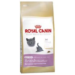 Royal Canin KITTEN BRITSKÁ